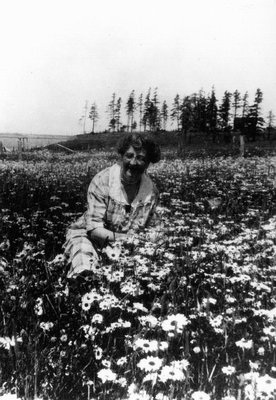 Montgomery in a field of flowers
